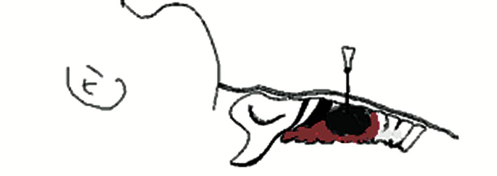 image-28